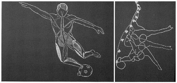 osteopathe du sport pour pubalgie