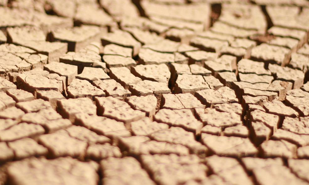 L'eczéma atopique, une grande sécheresse de la peau, provoque des démangeaisons pouvant aller aux lésions
