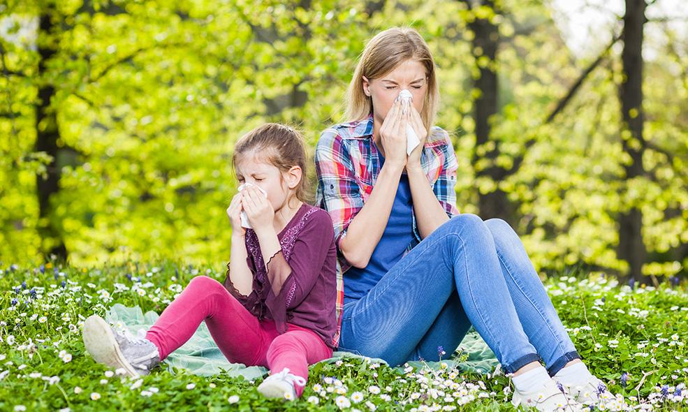 Les allergies aux pollens concernent adultes et enfants et empirent avec les années