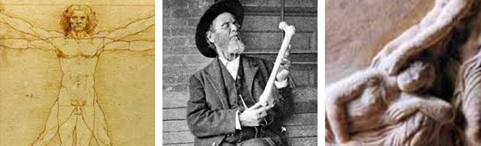 De la naissance de l'ostéopathie à sa reconnaissance