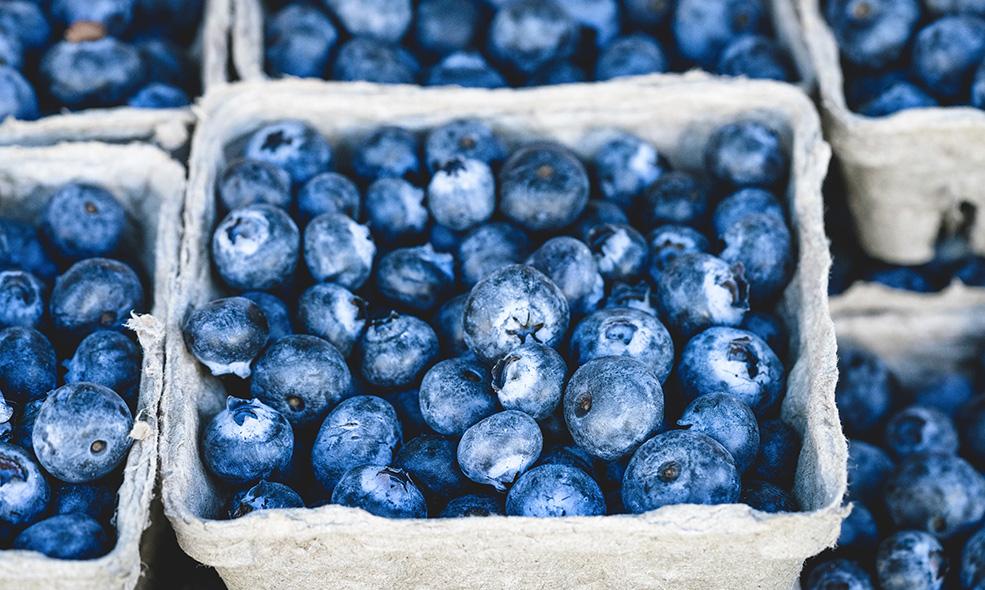 Les myrtilles font partie des champion des aliments anti-inflammatoires